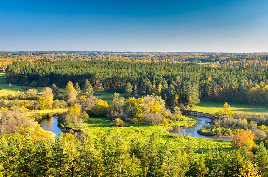 Sinine Äratus: Tõelist rohelist maailmavaadet pakub rahvuslus